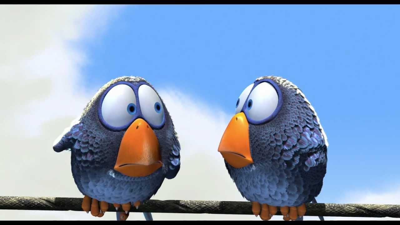 Ptaski